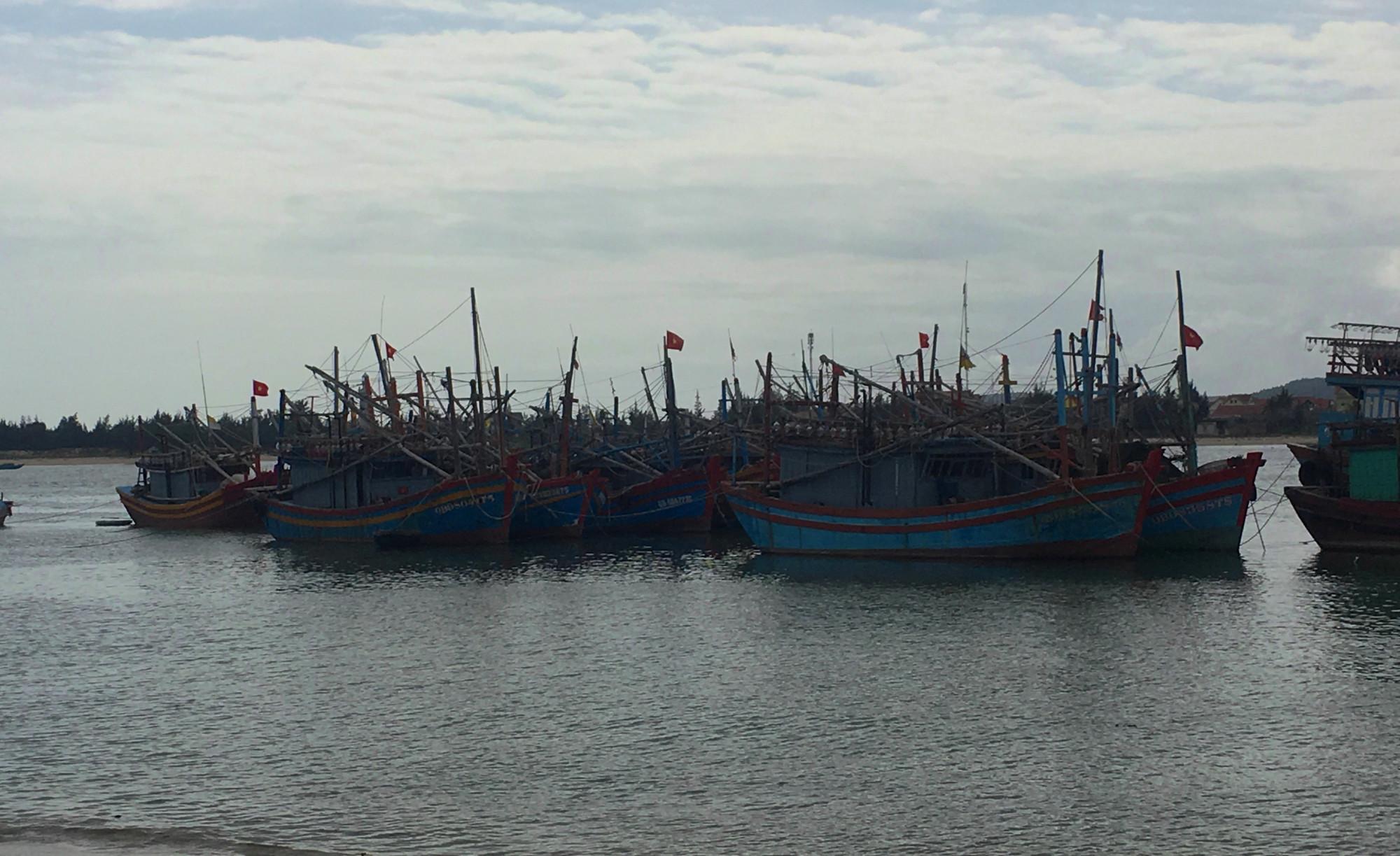 Trong khi đánh bắt trên biển, ngư dân thường gặp nhiều loài thủy sản tiềm ẩn độc tố nhưng không biết