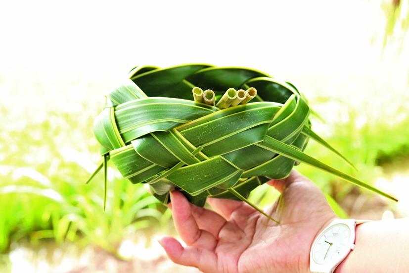 Thông điệp bảo vệ môi trường từ lá dừa