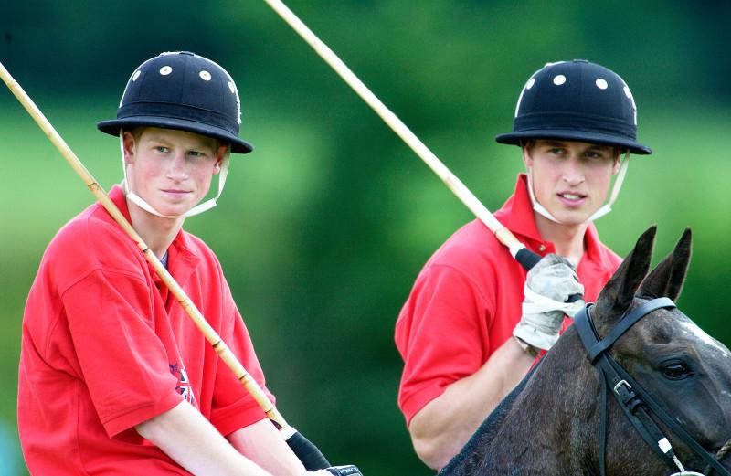 Vào tháng 7/2002, Hoàng tử William và Hoàng tử Harry nhân danh Đội polo nước Anh, gây quỹ cho tổ chức từ thiện Inspire, một tổ chức từ thiện cho những người bị chấn thương cột sống