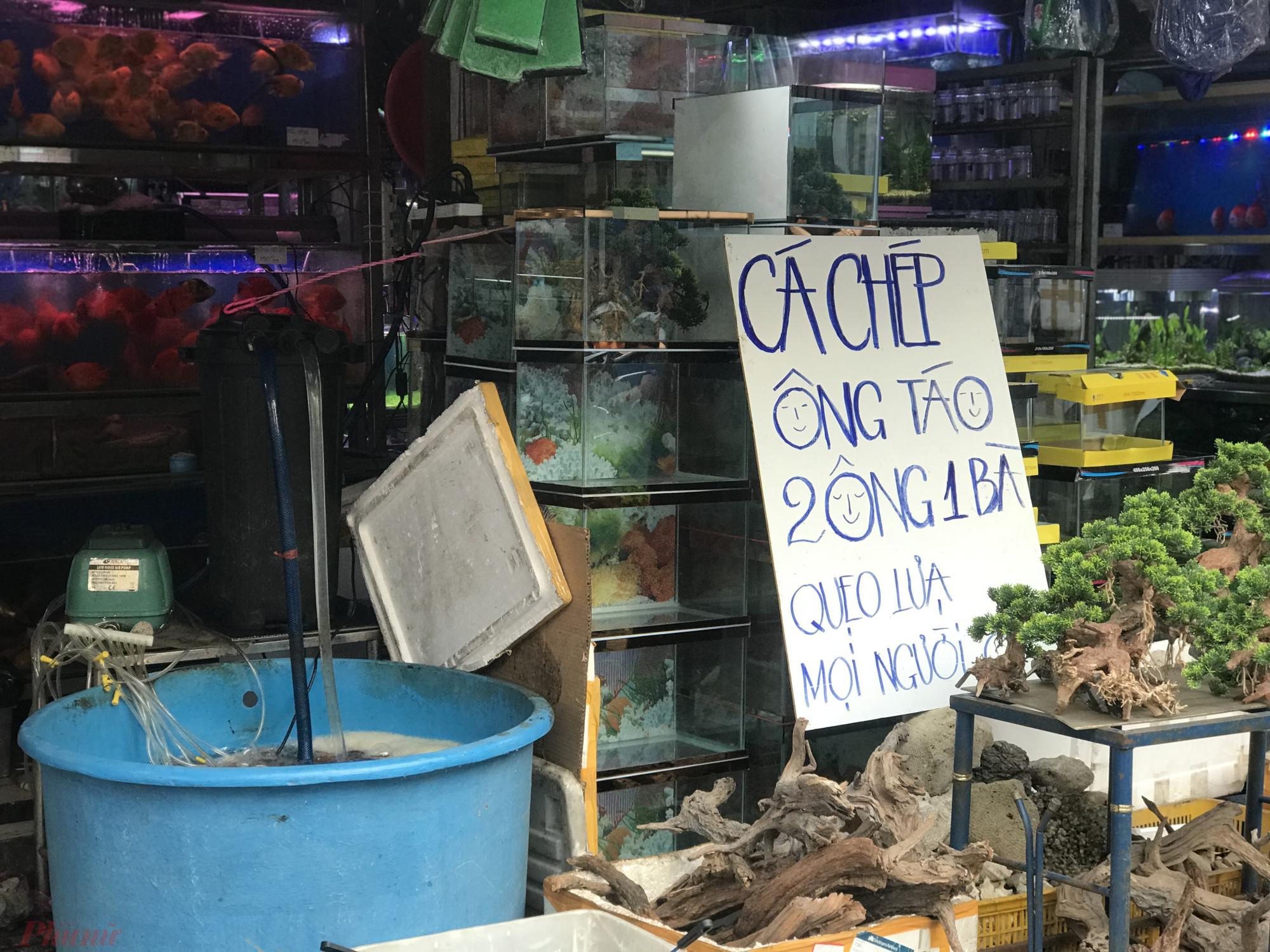 Còn tại các cửa hàng cá, mặc dù treo biển bán từ sáng 22 tháng Chạp, nhưng đến chiều chủ hàng cá tại đường Nguyễn Thông (quận 3) cho biết vẫn chưa bán được con nào.