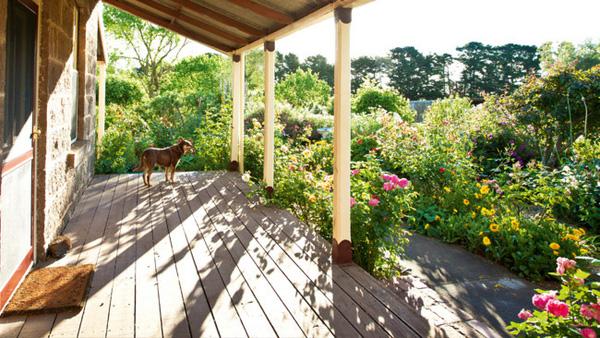 Khu vườn của bạn sẽ tràn đầy sức sống khi rộn ràng tiếng chim