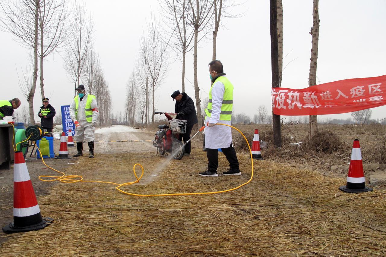 Căn bệnh giết chết hàng triệu con heo của Trung Quốc đang là mối đe dọa toàn cầu - Ảnh: AFP