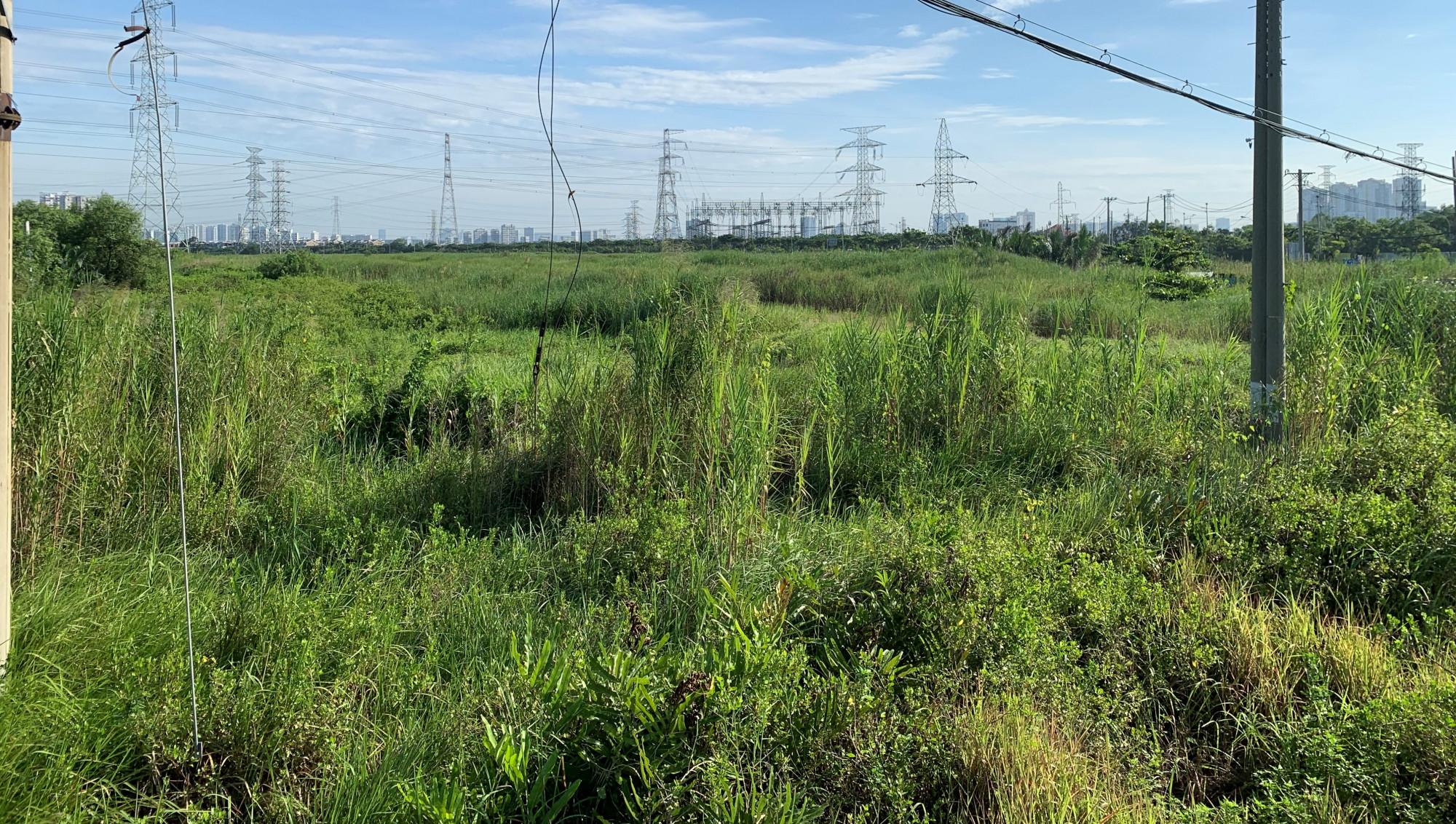 Khu đất trống gần 350 ha vẫn chưa có gì đã phân lô rao bán ầm ầm trên mạng
