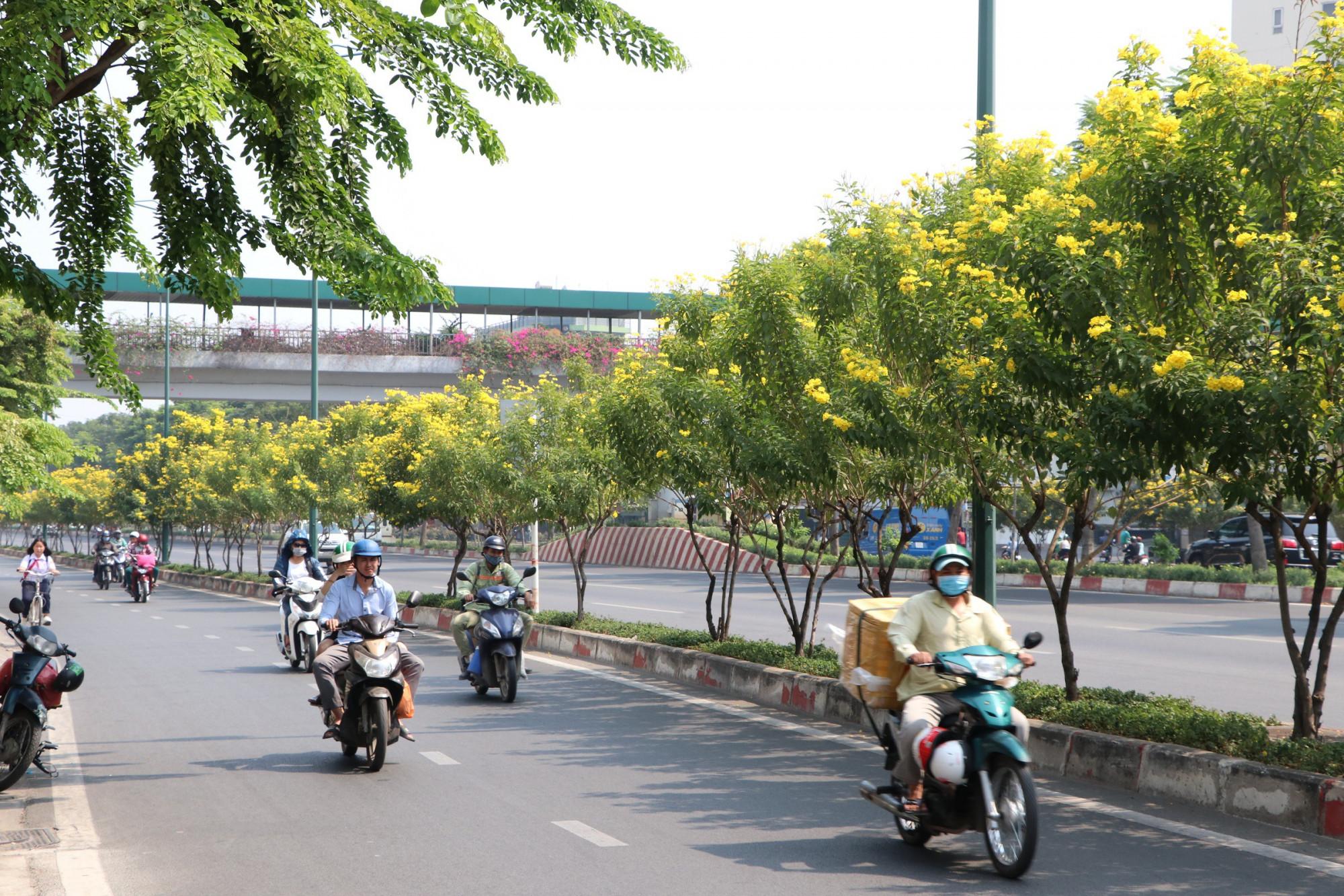 Đường phố Sài Gòn những ngày giáp tết - Ảnh: TPO