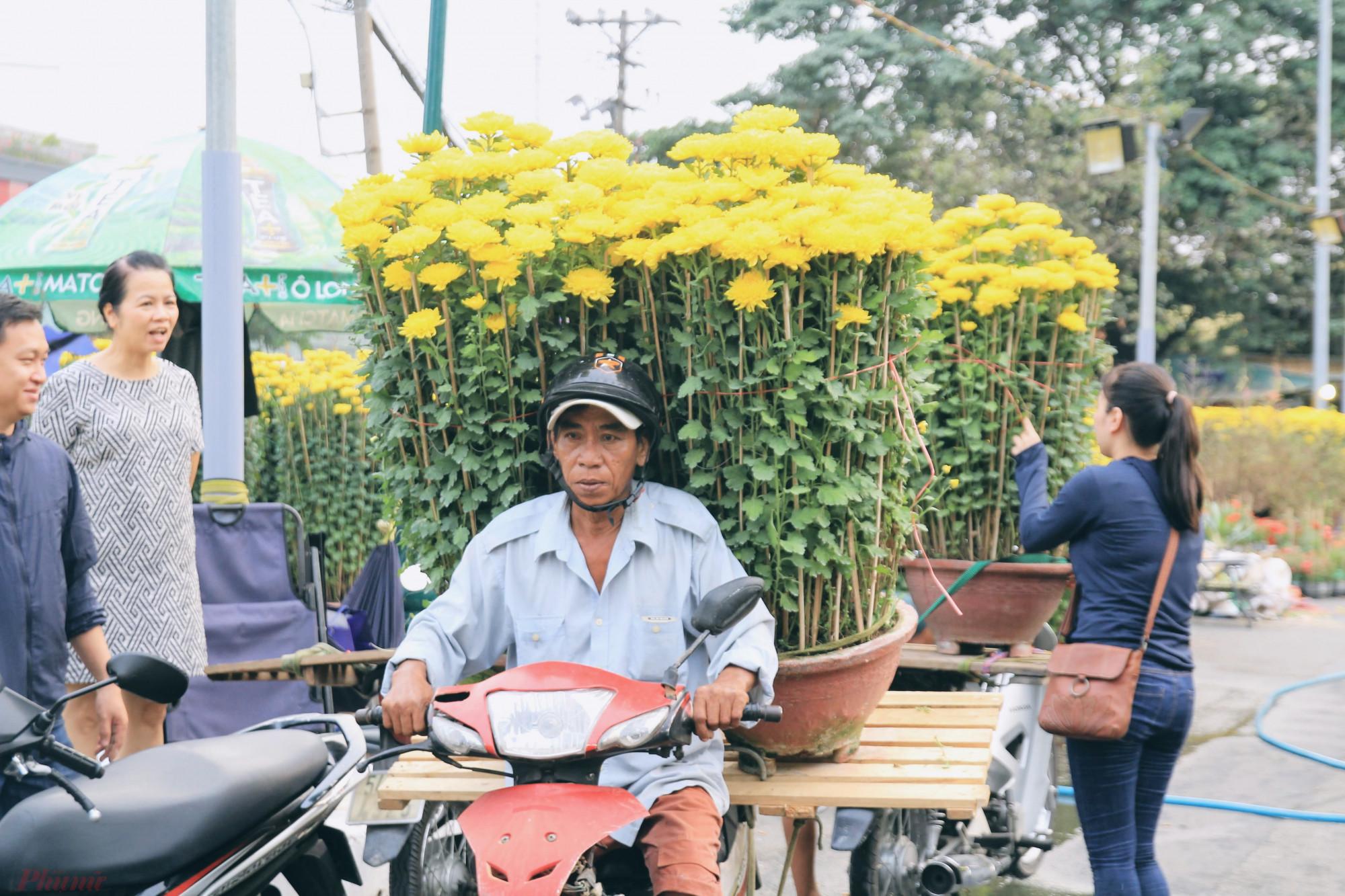 Từng tiết lộ với phóng viên, một người bán hoa cúc vàng tại TPHCM, mỗi mùa Tết sau khi tính mọi chi phí như nguồn hoa, mặt bằng, nhân công bán hàng, vận chuyển,... một mùa tết kiếm từ 200-300 triệu đồng.
