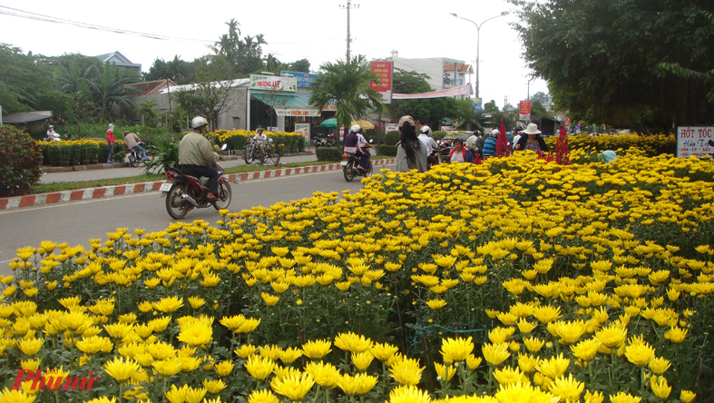 Bày bán hoa Tết dọc đường ở tỉnh Quảng Ngãi.