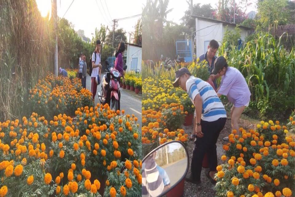 Mọi người mua hoa ủng hộ anh Phương để anh về quê lo việc tang gia cho vợ. Ảnh từ Facebook