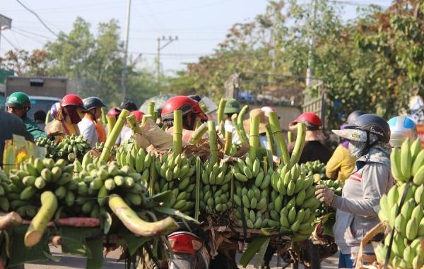 Chợ chuối Tân Long nhộn nhịp vào những ngày giáp tết - Ảnh từ Internet