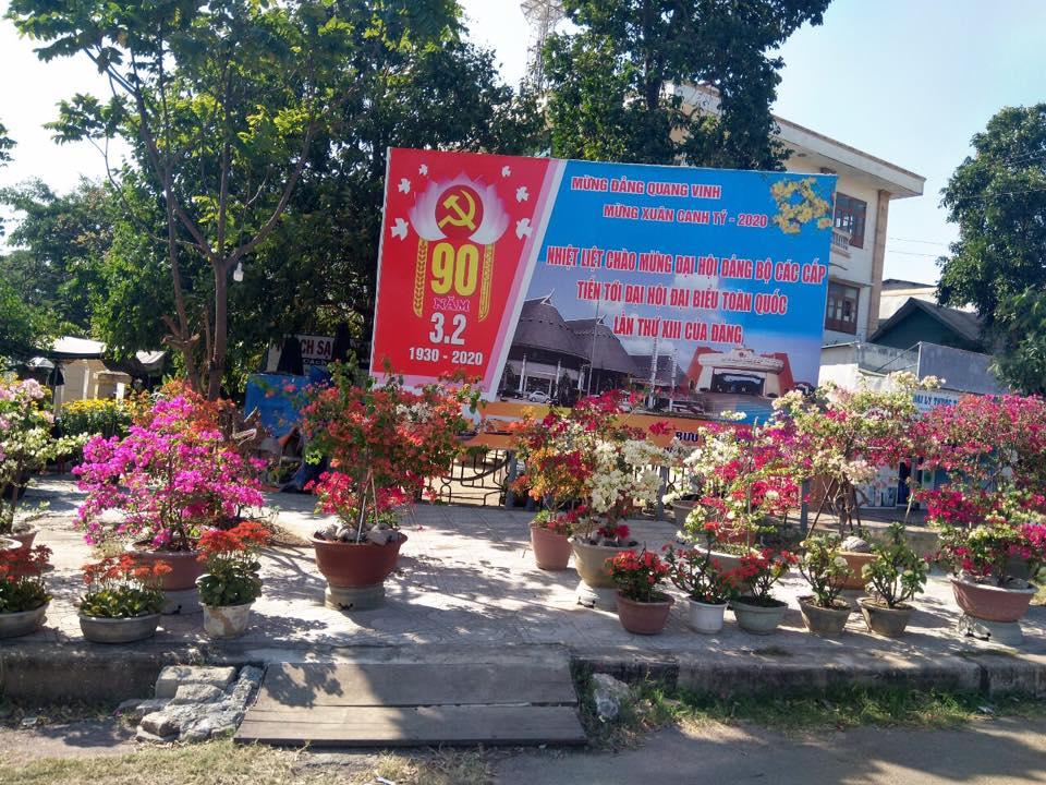 Hoa giấy được bày bán trong chợ hoa xuân