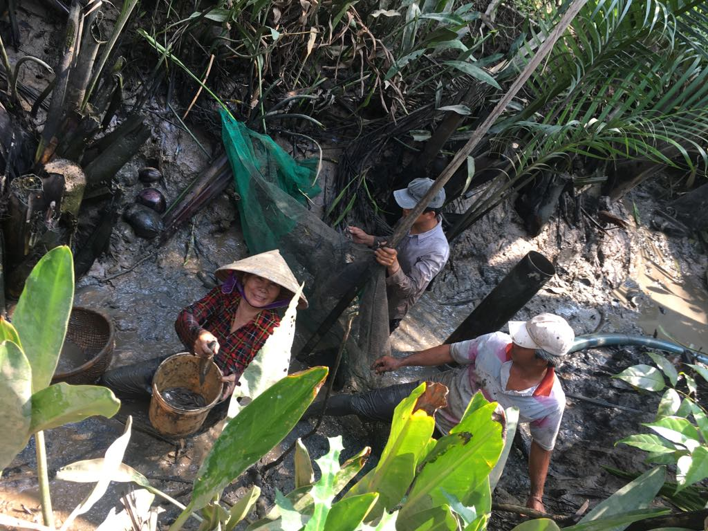 Nhờ tát mương được tôm cá kha khá, nhà thím Chín (Bờ Dừa) ăn tết ấm.
