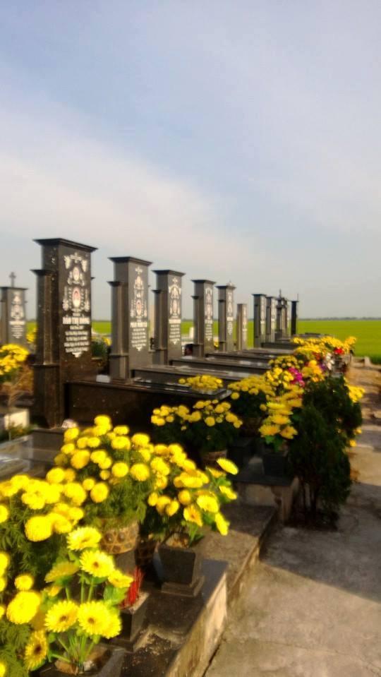 Ngày tết nghĩa trang luôn ấm áp bởi sắc hoa vàng rực
