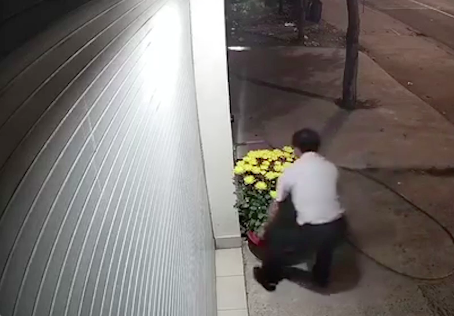 Người đàn ông trộm 2 châu cúc của gia chủ tại Bình Dương vào rạng sáng 29 Tết.