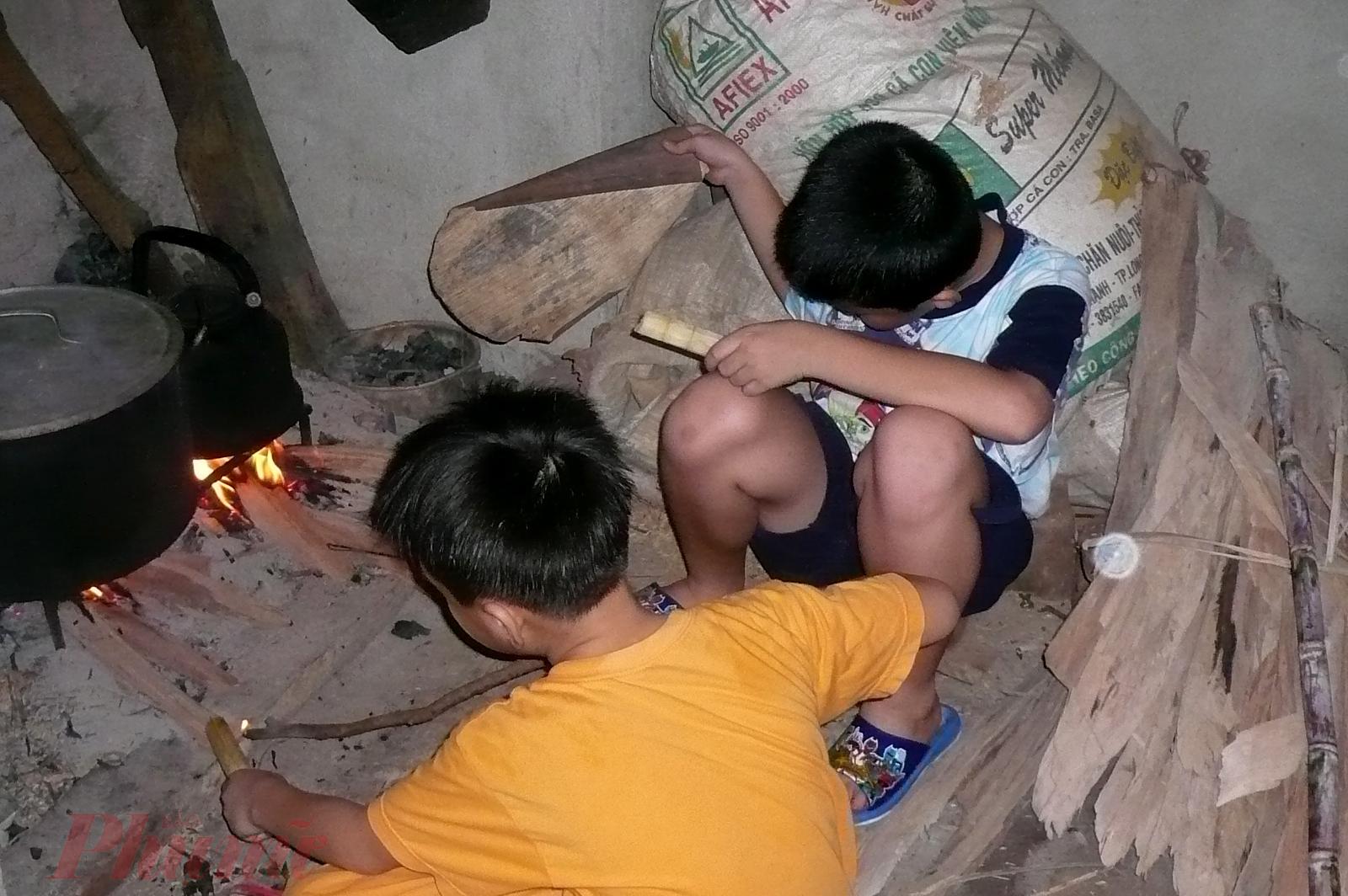 Được ngắm đàn heo con, được đun bếp bằng củi khô... cũng là những trải nghiệm khó quên với những đứa trẻ ở phố
