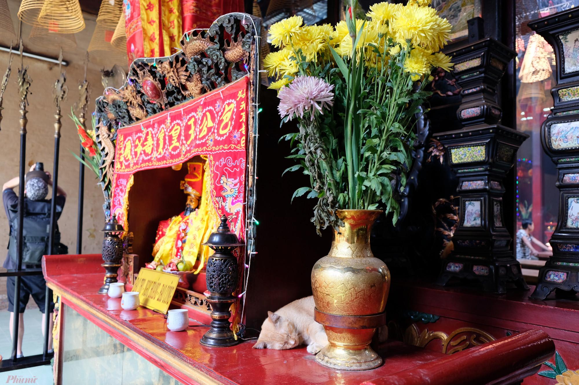 Ngoài lễ vía Bà là ngày lễ lớn nhất của hội quán Quảng Triệu, còn những ngày lễ khác cũng được cúng lớn như Tết Nguyên đán, Tết Nguyên tiêu, Tết Trung thu, ngày vía của các vị thần khác thờ trong hội quán.