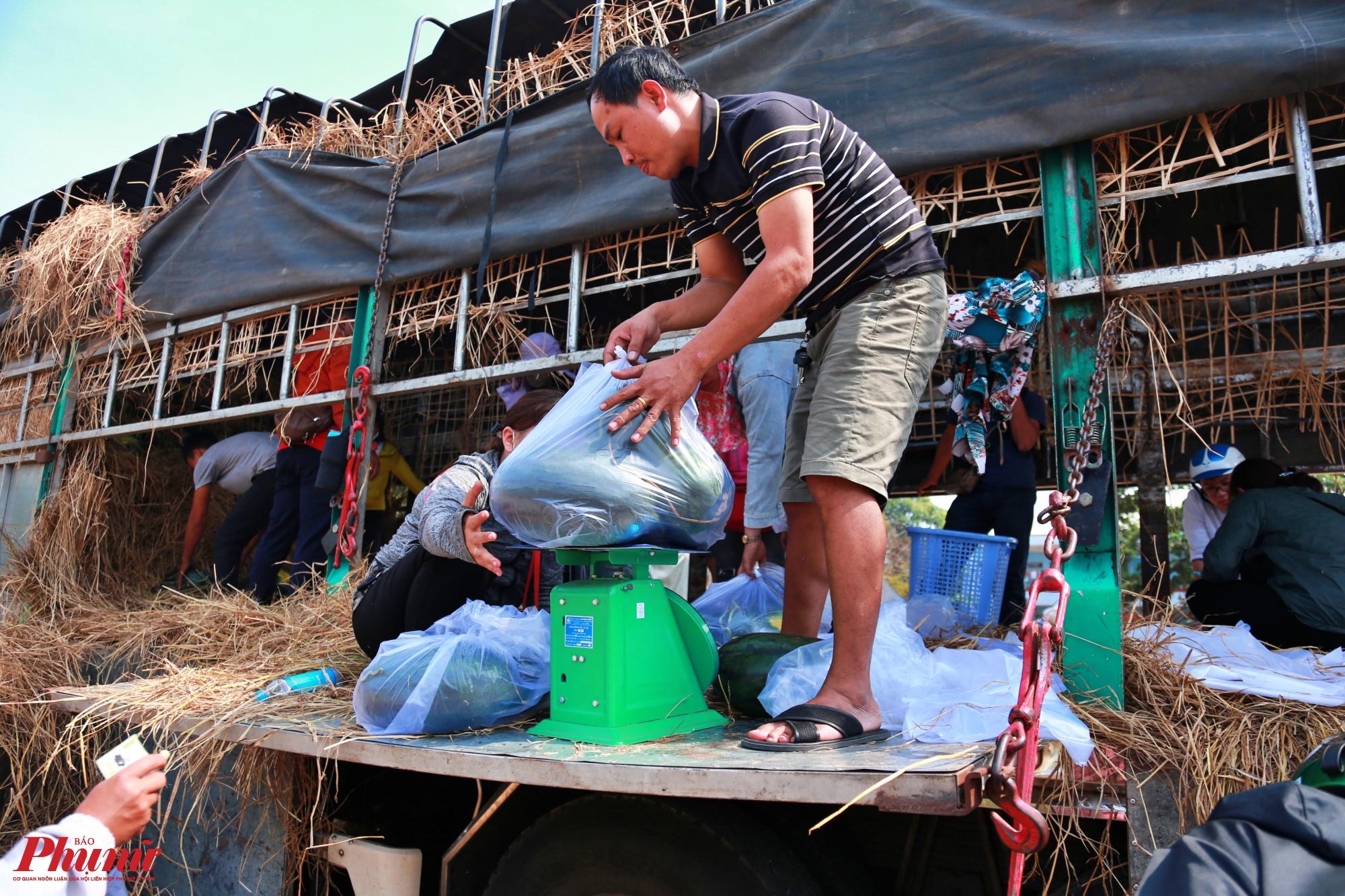 Theo chủ xe tải đậu bán ở đây cho biết, hiện số dưa trên Gia Lai còn rất nhiều, lên đến hàng ngàn tấn. Có nhà vườn còn tồn tại hơn 100 tấn dưa do không thể xuất qua Trung Quốc được.