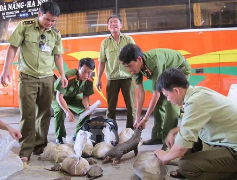 Bất chấp cảnh báo, nạn mua bán động vật hoang dã vẫn diễn ra - Trong ảnh: Cơ quan chức năng phát hiện một vụ buôn lậu động vật hoang dã