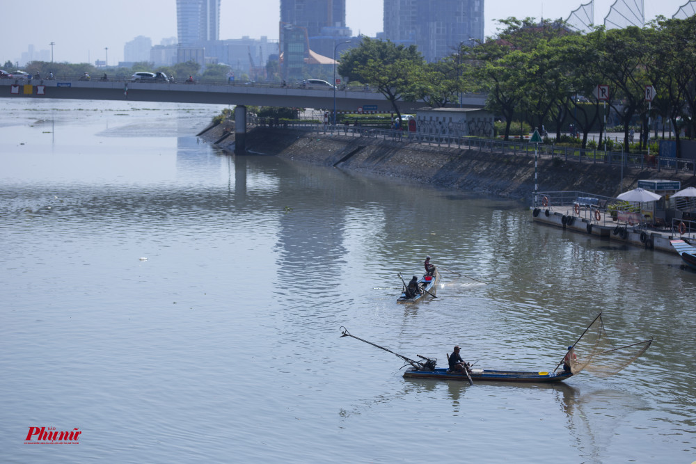 Đánh bắt cá bằng bình kích điện gần cửa sông Sài Gòn