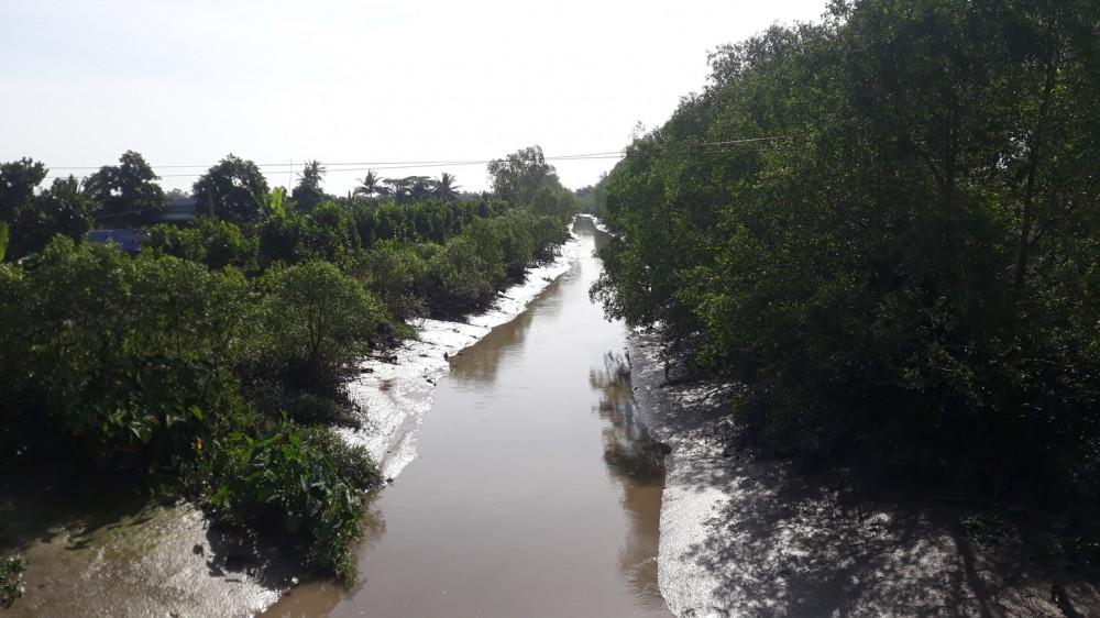 Nhiều con sông, kênh rạch nội đồng đều đang trong tình trạng cạn dòng, phơi đáy