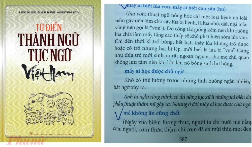 Từ trái qua: Bìa cuốn sách Từ điển thành ngữ tục ngữ Việt Nam và những nội dung sao chép của nhóm tác giả biên soạn do tác giả Hoàng Tuấn Công phát hiện