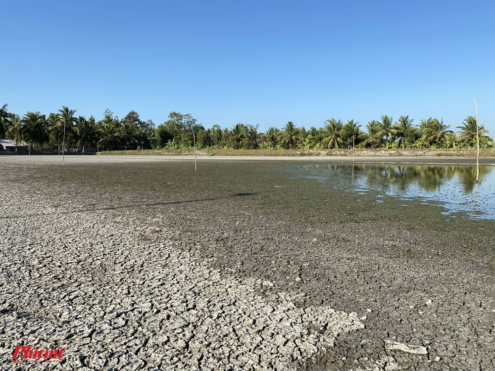 Ao cá của gia đình anh Phan Thành Nghiệp (xã Thạnh Trị, huyện Cò Công Tây, Tiền Giang) trơ đáy, đất nứt nẻ vì không có nước trong 1 tháng qua. Anh cho biết với tình hình này sẽ phải chịu lỗ một vụ cá.