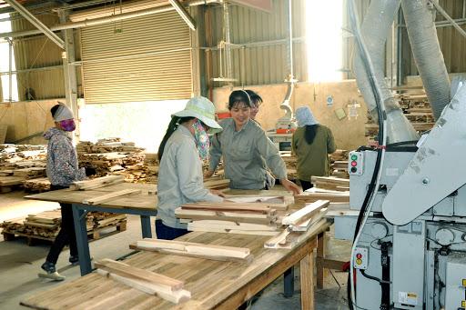 Các nhà máy lắp ráp gỗ dán cứng tại Việt Nam và nhà máy sản xuất tại Trung Quốc bị cáo buộc là các công ty liên kết, thực hiện hành vi lẩn tránh biện pháp chống bán phá giá, chống trợ cấp đang áp dụng với sản phẩm của Trung Quốc. Ảnh minh họa.