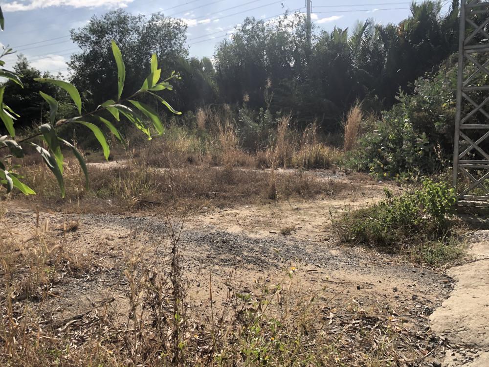 Bên trong dự án là bãi đất trống