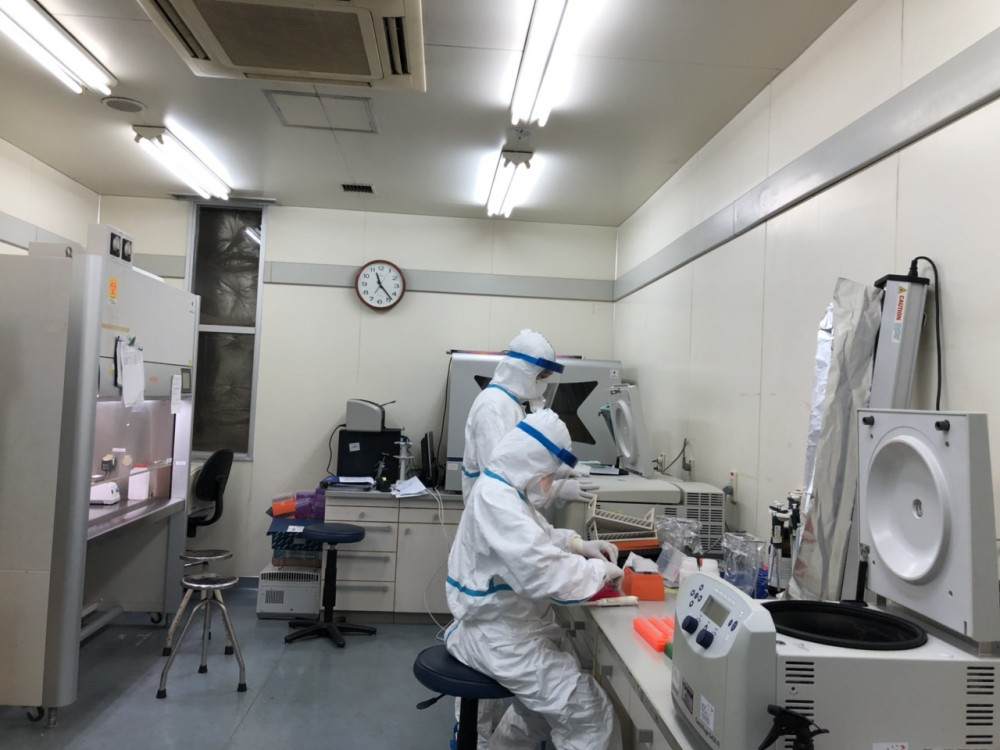 Phân lập virus corona trong phòng an toàn sinh học cấp 3 tại Viện vệ sinh dịch tễ Trung ương.