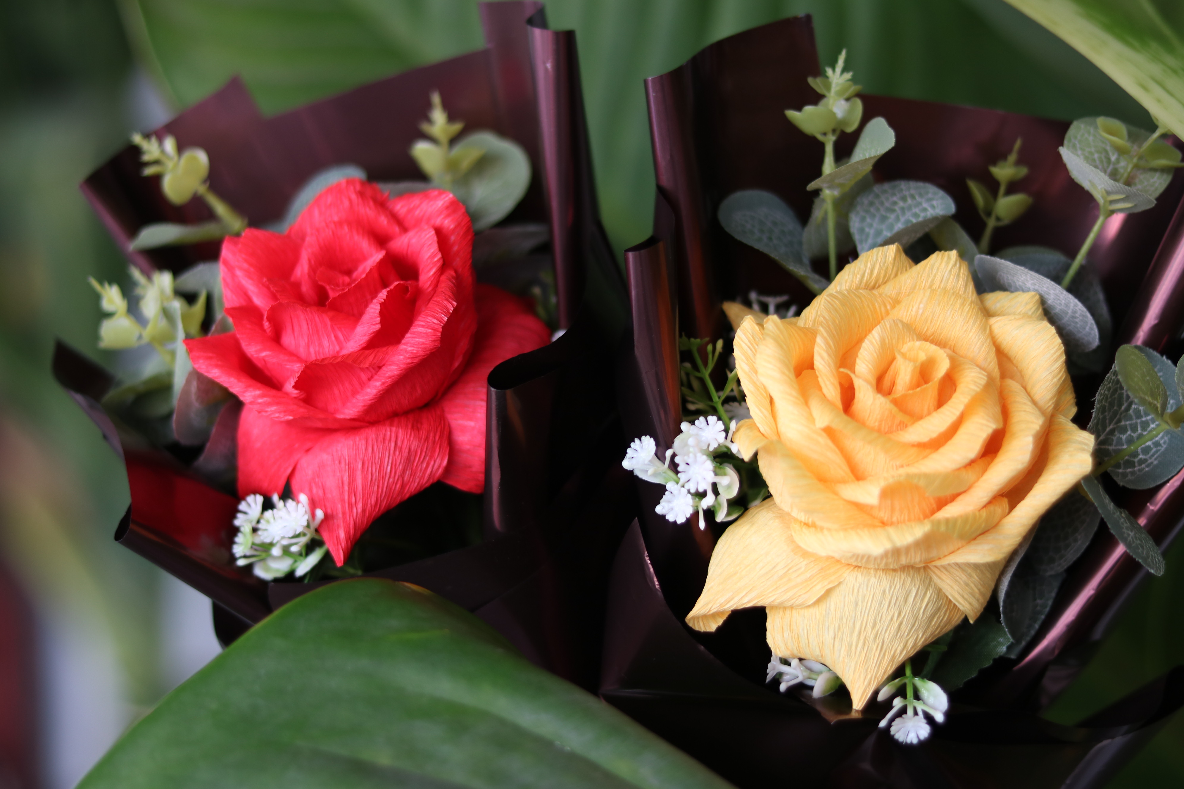 Hoa hồng giấy.