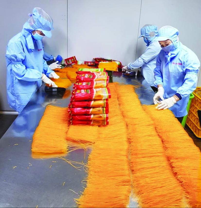 Nhân viên Công ty Duy Anh chế biến bún, bánh tráng từ thanh long, dưa hấu
