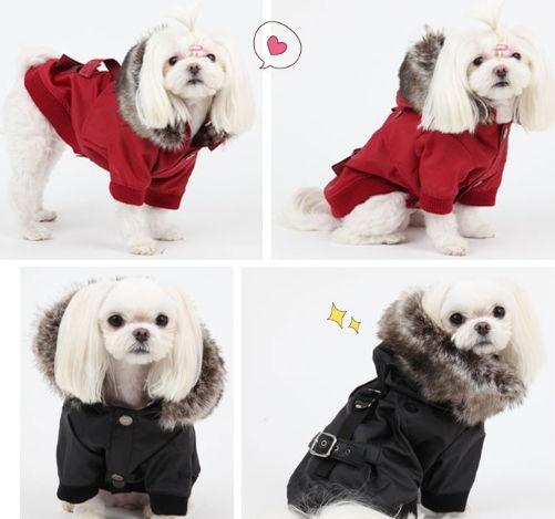 Những trang phục được thiết kế riêng cho từng giống chó.