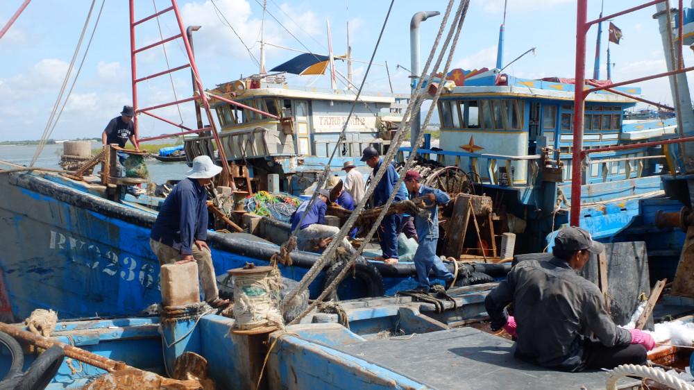 Bộ NN-PTNT đề nghị các địa phương tập trung khắc phục các tồn tại trong công tác kiểm soát tàu cá ra - vào cảng, đảm bảo kiểm soát 100% sản lượng cập bến tại các cảng cá chỉ định và thu hồi 100% nhật ký khai thác của các tàu cá cập cảng, truy xuất nguồn gốc thủy sản xuất sang thị trường EU.
