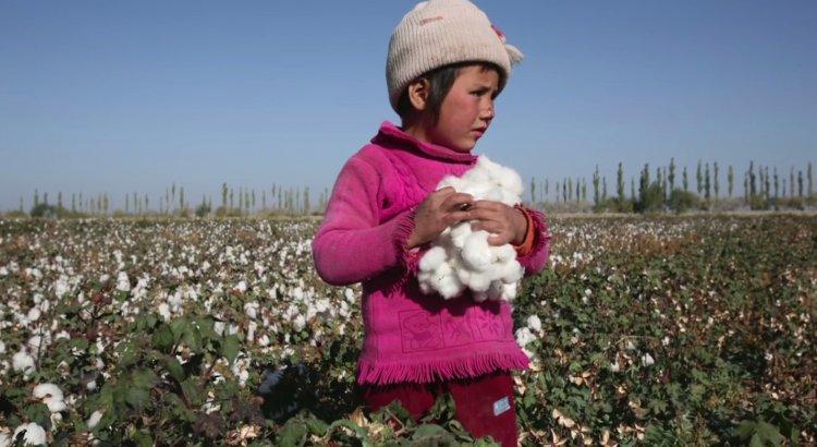 Nhiều lao động trẻ em vẫn đang làm việc tại các nhà máy ở khu vực Nam Á.