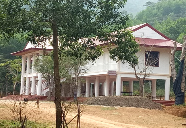 Căn biệt thự được xây dựng trong rừng sản xuất