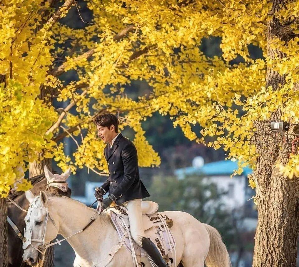 Vóc dáng cao ráo cùng thần thái cuốn hút của Lee Min Ho nhận được nhiều lời khen từ người hâm mộ.