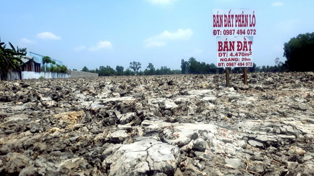 Đất được thu mua để san lấp mặt bằng làm nền nhà ven quốc lộ