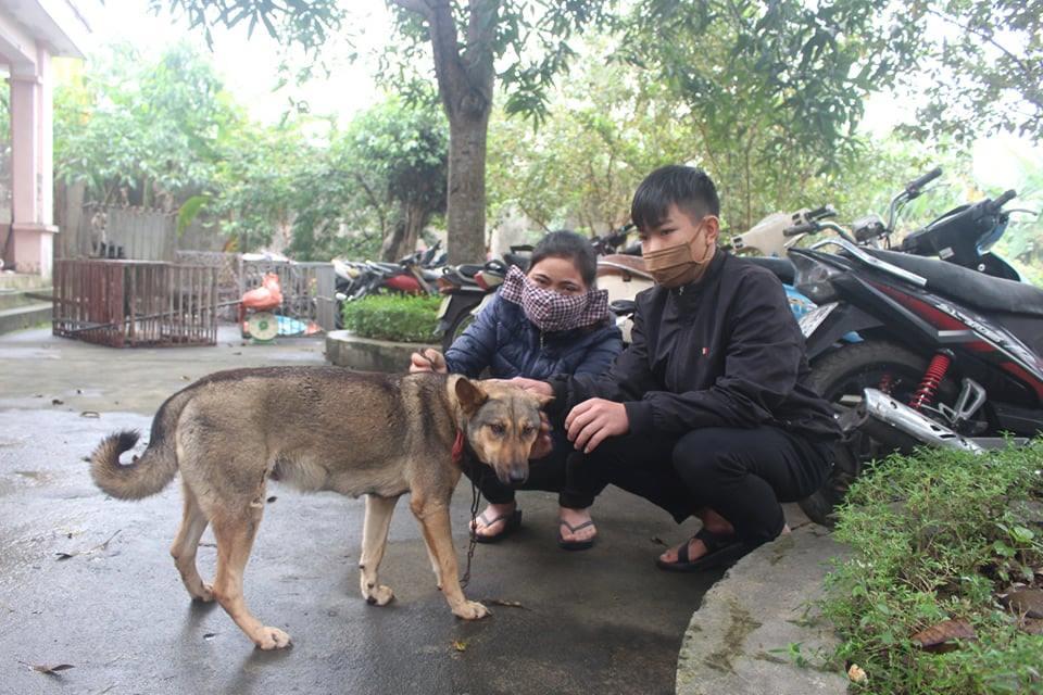 Một số chú chó được giải cứu, trả lại cho chủ nhân