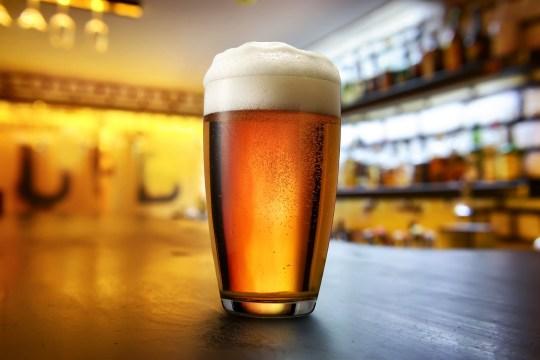 Trong sản xuất bia, nấm men chuyển đổi glucose trong sản xuất bia thành rượu ethyl và khí carbon dioxide.
