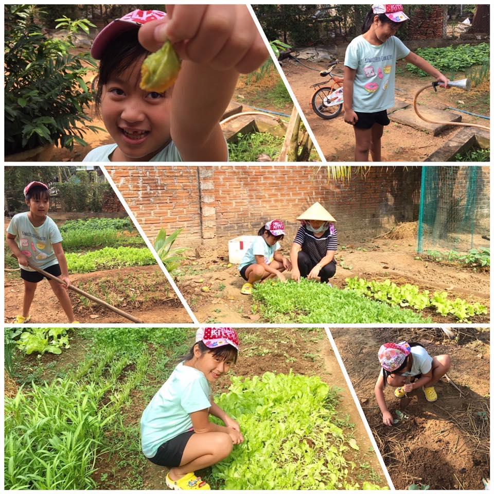 Bài thi của Nguyễn Hoàng Khánh Ngân trường tiểu học Nguyễn Huệ - Hóa thâ thành bác nông dân cùng chăm vườn rau của bà