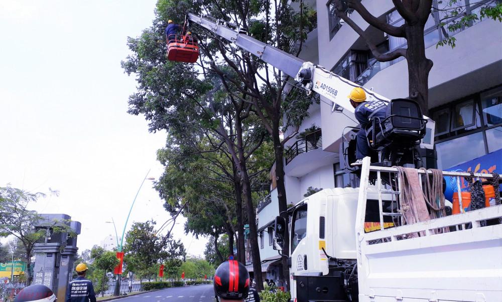 Người dân ở đường Trường Sa ( Quận Phú Nhuận) thắc mắc không hiểu vì sao trời đang nắng chói chang nhưng cây xanh lại bị chặt tàn, mé nhánh. Ảnh: H.N