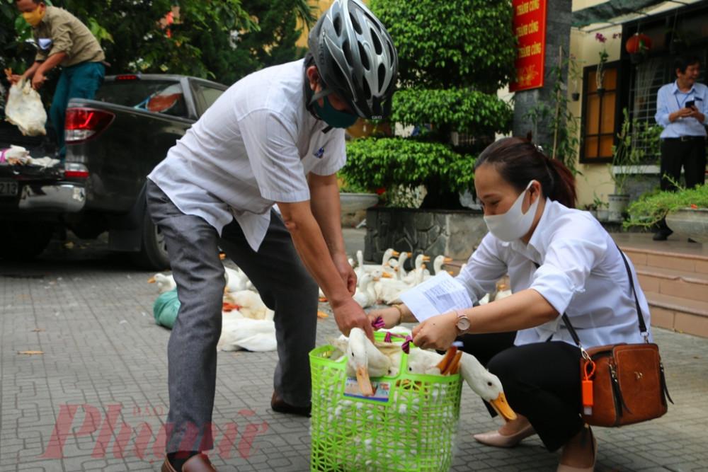 Đặc biệt số vịt tặng  hộ nghèo khu vực  Nội thành đã được cán bộ  Thú y kiểm dịch chặt chẽ