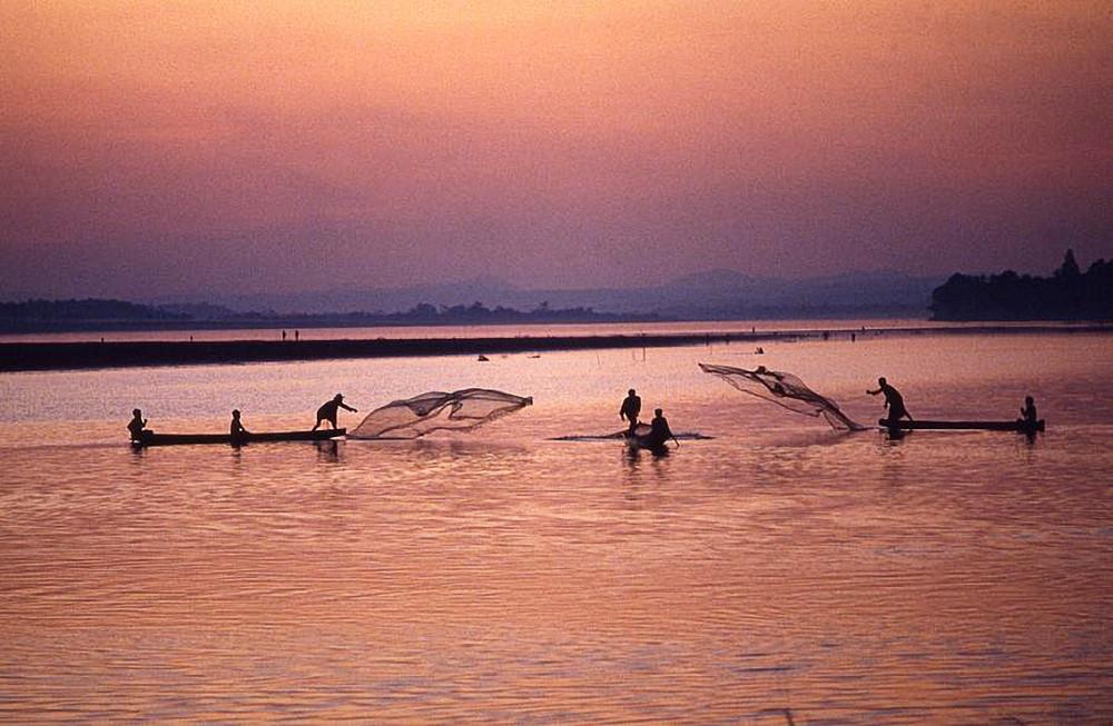 Theo dự báo năm 2019 của tổ chức International Rivers, các đập  thủy điện sẽ khiến tổng sinh khối thủy sản sẽ giảm tại lưu vực sông  Mê Kông giảm 35-40% vào năm 2020 và 40-80% vào năm 2040