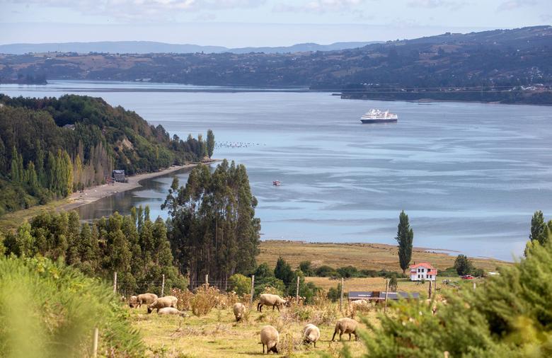 Một con tàu du lịch bị cô lập ở cảng phía Nam của Chile vào ngày 14/3 sau khi có một hành khách có dấu hiệu nhiễm SARS-CoV-2.