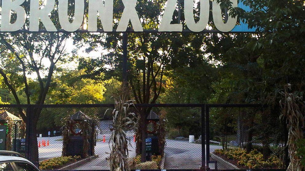 Sở thú Bronx.