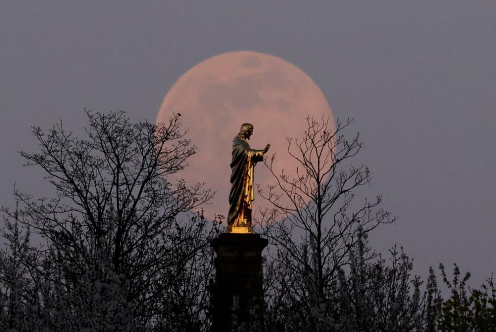 Siêu trăng là hiện tượng thiên văn khi mặt trăng ở gần trái đất khiến cho hình ảnh về mặt trăng quan sát được to và sáng hơn bình thường. Siêu trăng lần này còn được chú ý khi có màu hồng nhạt đẹp mắt. Trong ảnh là siêu trăng xuất hiện sau bức tượng chúa ở Strasbourg, Pháp.