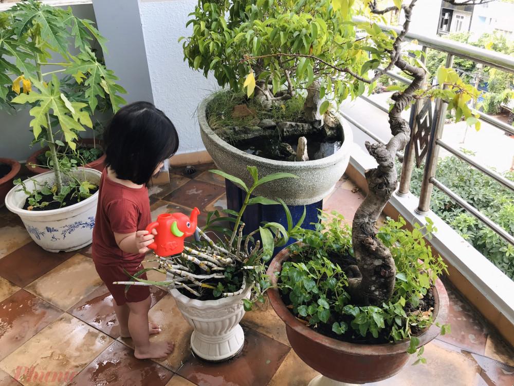 Cho con khám phá và dạy con chăm sóc tưới cây.