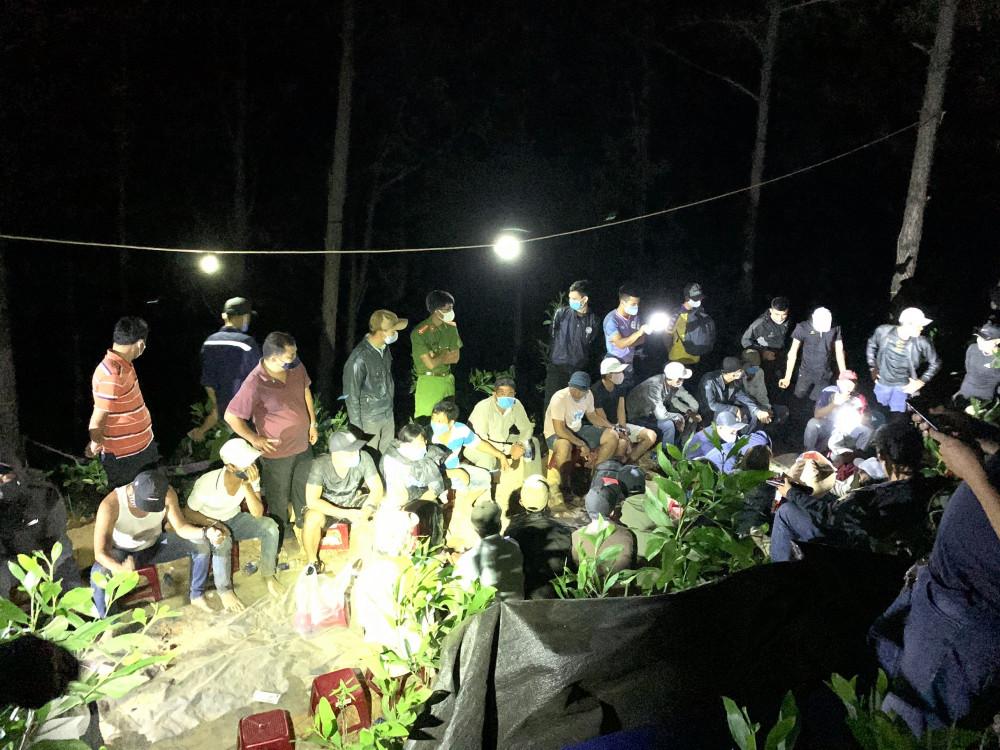 41 đối tượng tham gia sát phạt trong rừng phòng hộ bị công an Quảng Nam bắt quả tang.