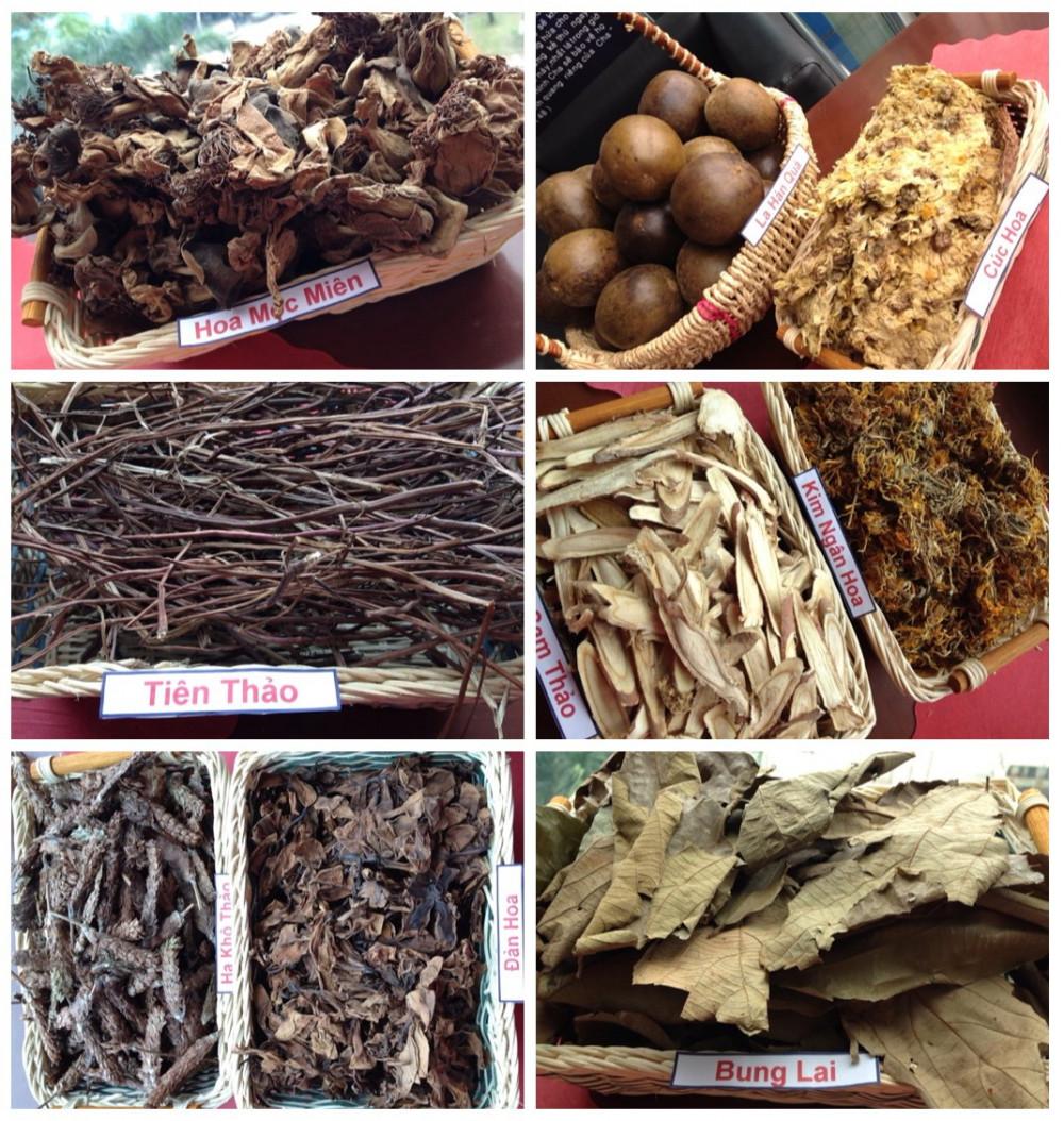 Từ xa xưa trong dân gian, các loại thảo mộc tự nhiên đã được dùng để điều trị bệnh