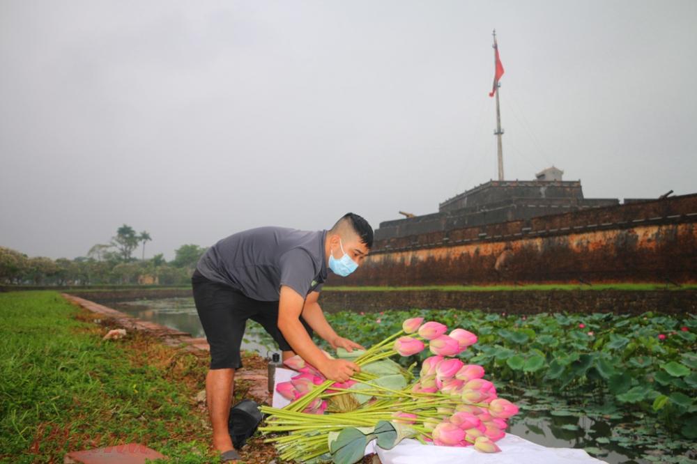 Mỗi bó sen giữa mùa COVID-19 được bán với giá 40 nghìn/10 bông nhưng anh Tuấn vẫn rơi vui khi được đem hoa đến mọi người