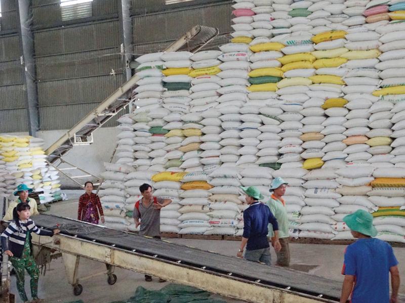 Hiện có thông tin, tổng cục trưởng Tổng cục Dự trữ, cho biết từ ngày 12-3, đơn vị này đã mở thầu cung cấp 190.000 tấn gạo dự trữ quốc gia cho năm nay nhưng đến ngày 14-4, mới chỉ mua được 7.700 tấn gạo, bằng 4% kế hoạch được giao.