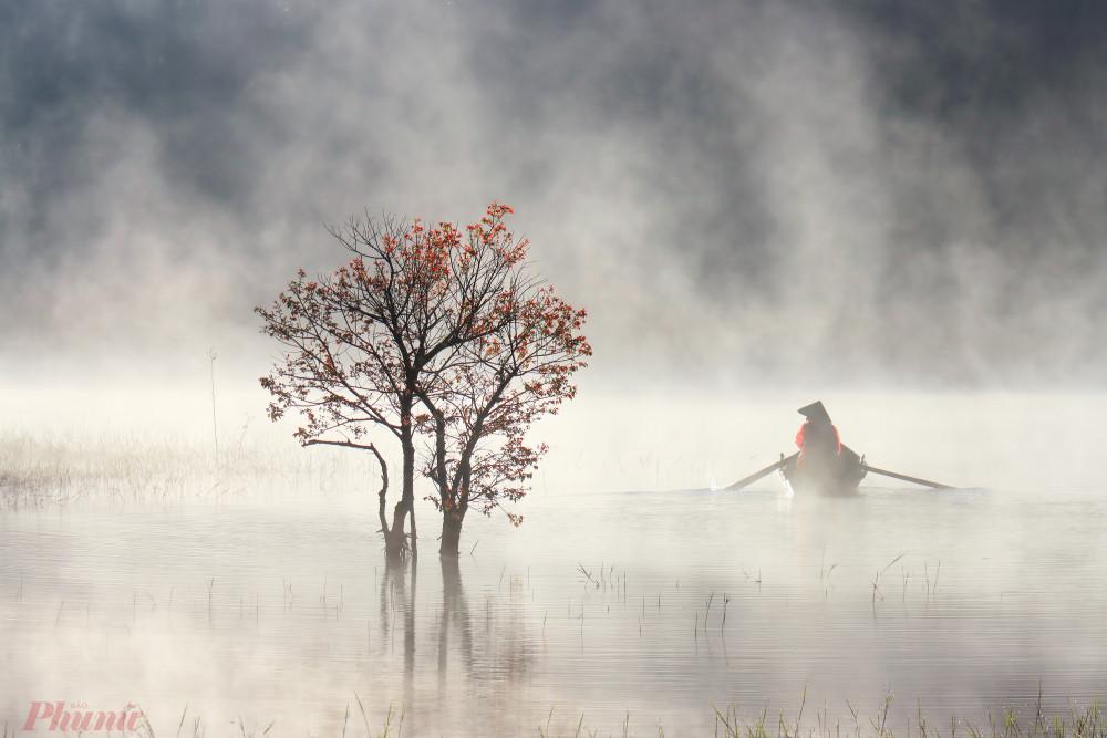 Từ hồ Tuyền Lâm đi sâu vào các khu rừng ngập nước, quang cảnh hiện ra giống hệt chốn bồng lai. Ảnh: Võ Trang.